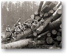 Logging crew on cold deck, Mason County Logging Co., Bordeaux, ca. 1932. Special Collections, UW Libraries, C. Kinsey 2026